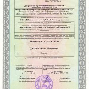 Лицензия. Приложение (2)