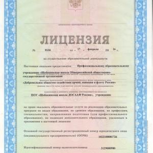 Лицензия_page_01